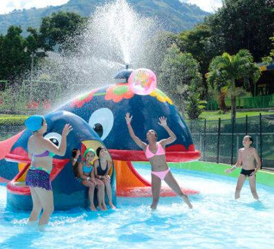 copacabana-ballenas